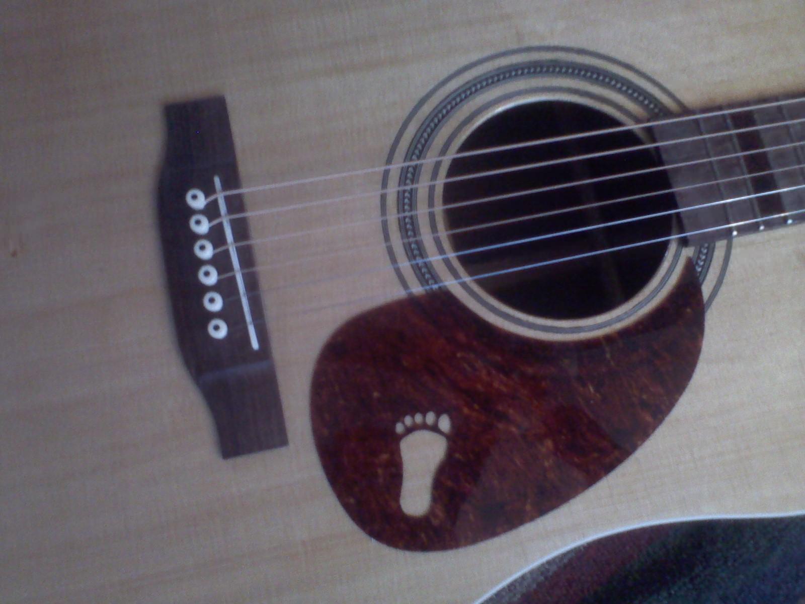 squatch guitar