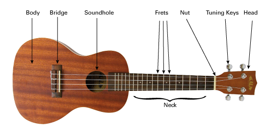 How to play the ukulele standing up | ArtistWorks