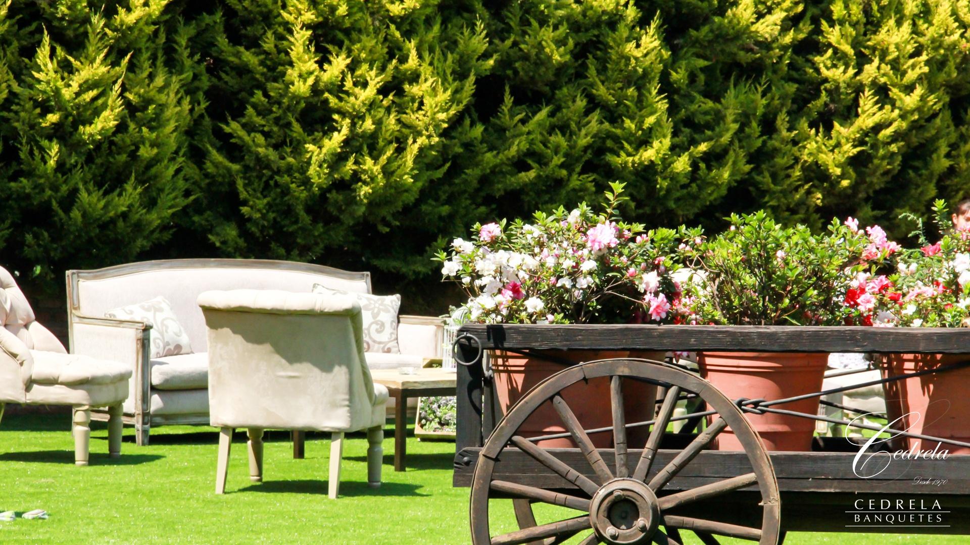 Los 5 jardines m s bonitos para casarte en cdmx for Jardines baratos