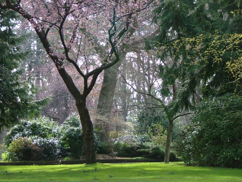 The city's mild climate means expansive and lushly green natural areas, such as Beacon Hill Park, abound.