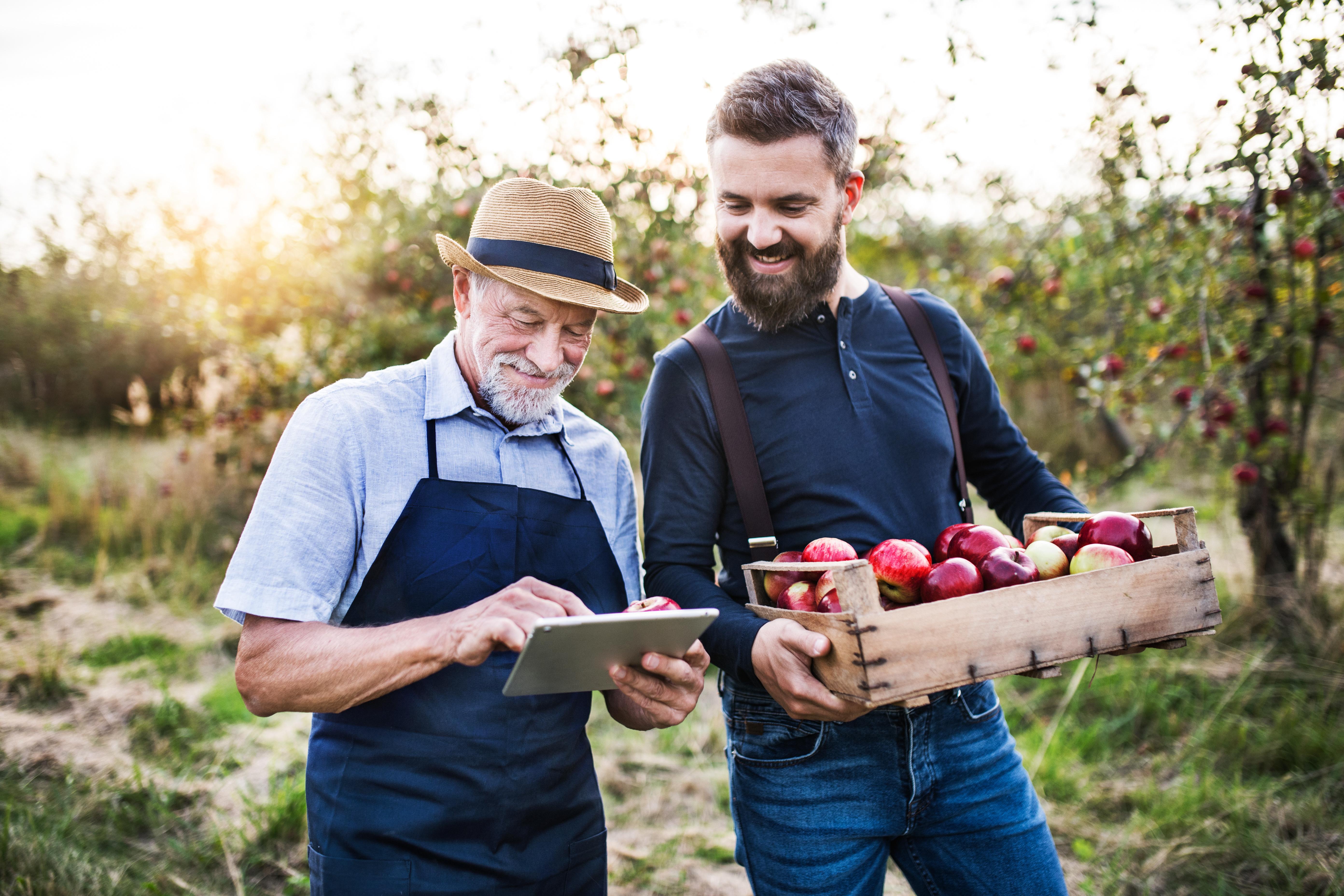 A farmer sells apples to a local vendor.