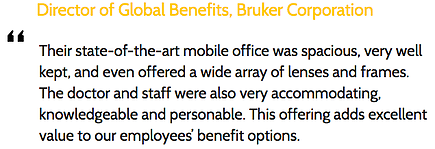 Director of Global Benefits, Bruker Corporation