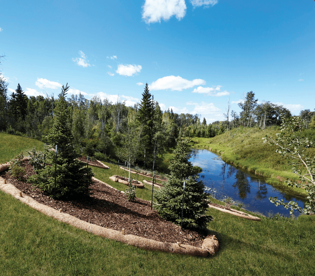 Living in The Uplands: Our Interview with a Happy Homeowner Scenery Image