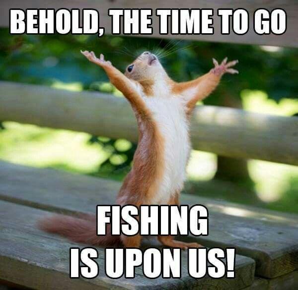2019 S Top Summer Fishing Memes Legend Boats