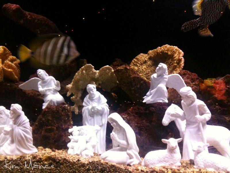 Underwater Nativity 2