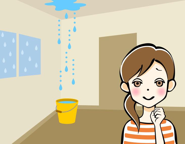 Te dedicas a brindar servicios dom sticos simpliroute te - Ayuda para arreglar mi casa ...
