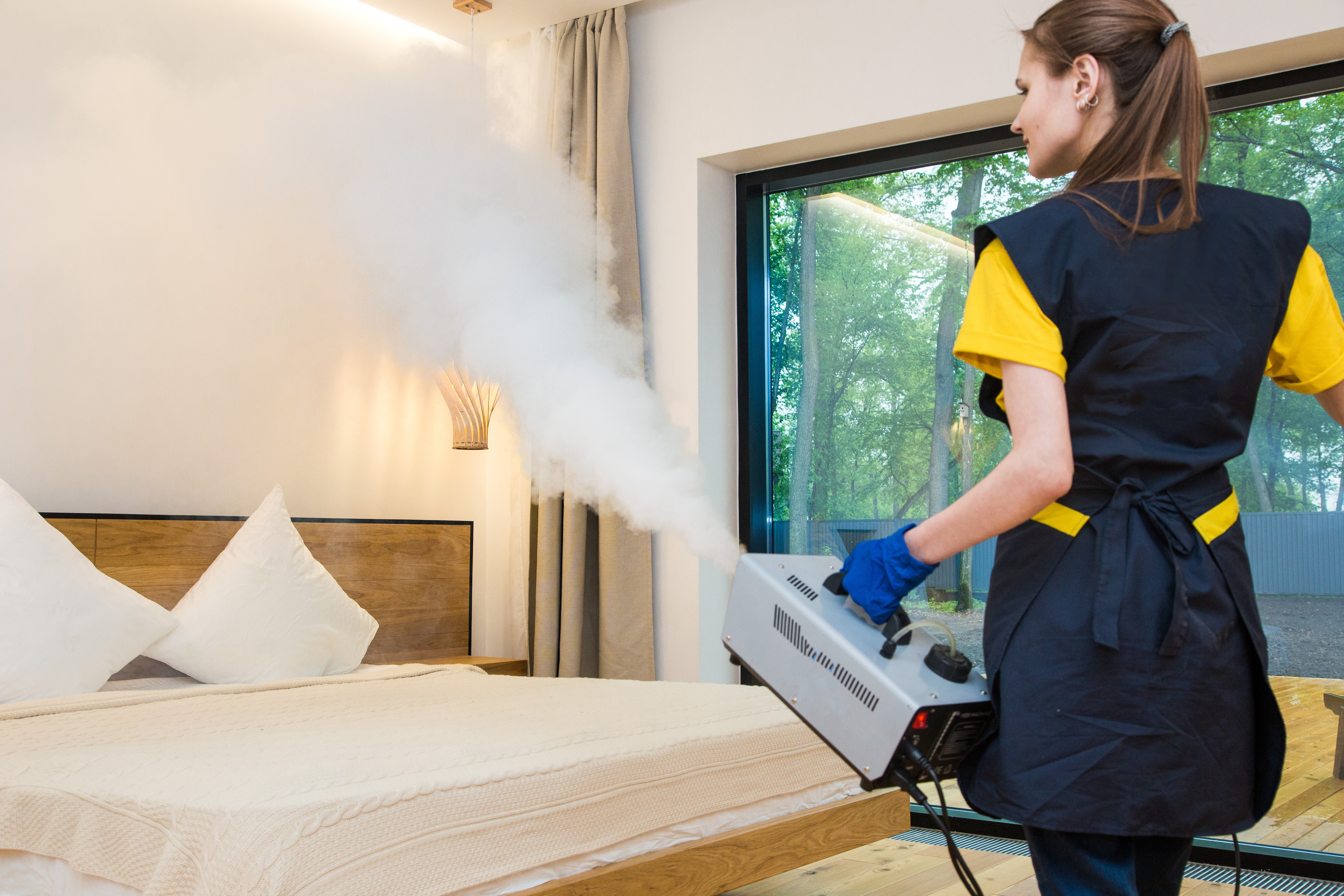 Bed Bug Cleaning