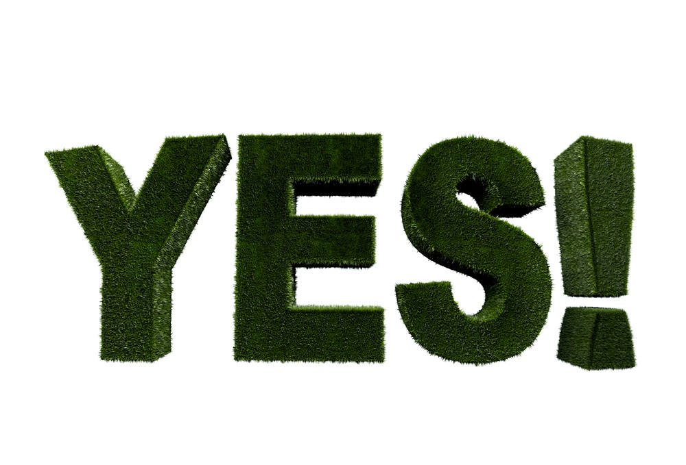 Word 'yes' in grass texture isolated over white.jpeg