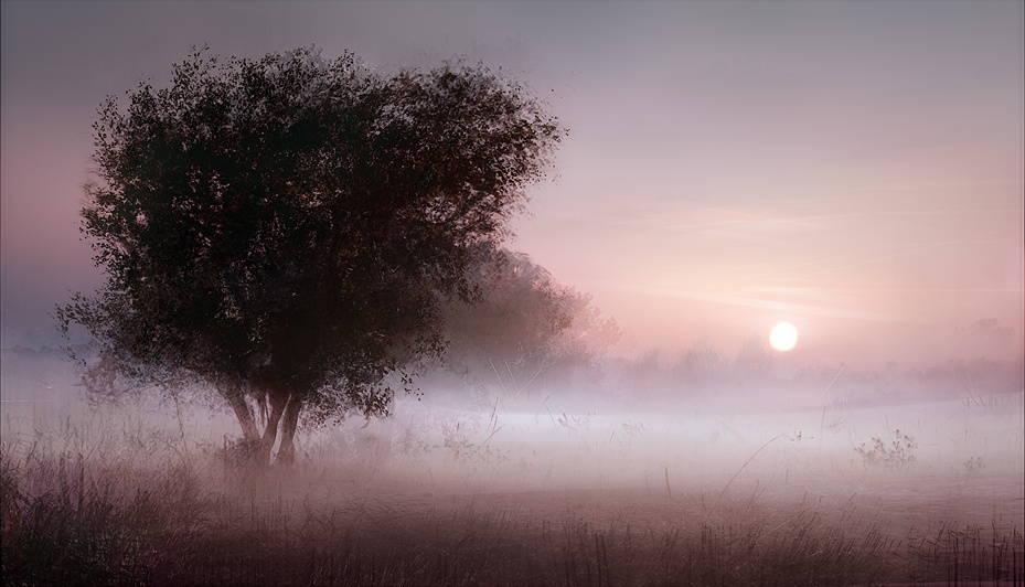 foggy_morning_by_leventep-d5lxzy3.jpg