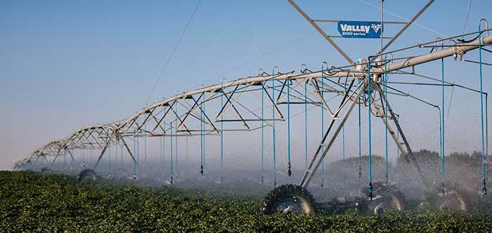 Irrigation system spraying crops