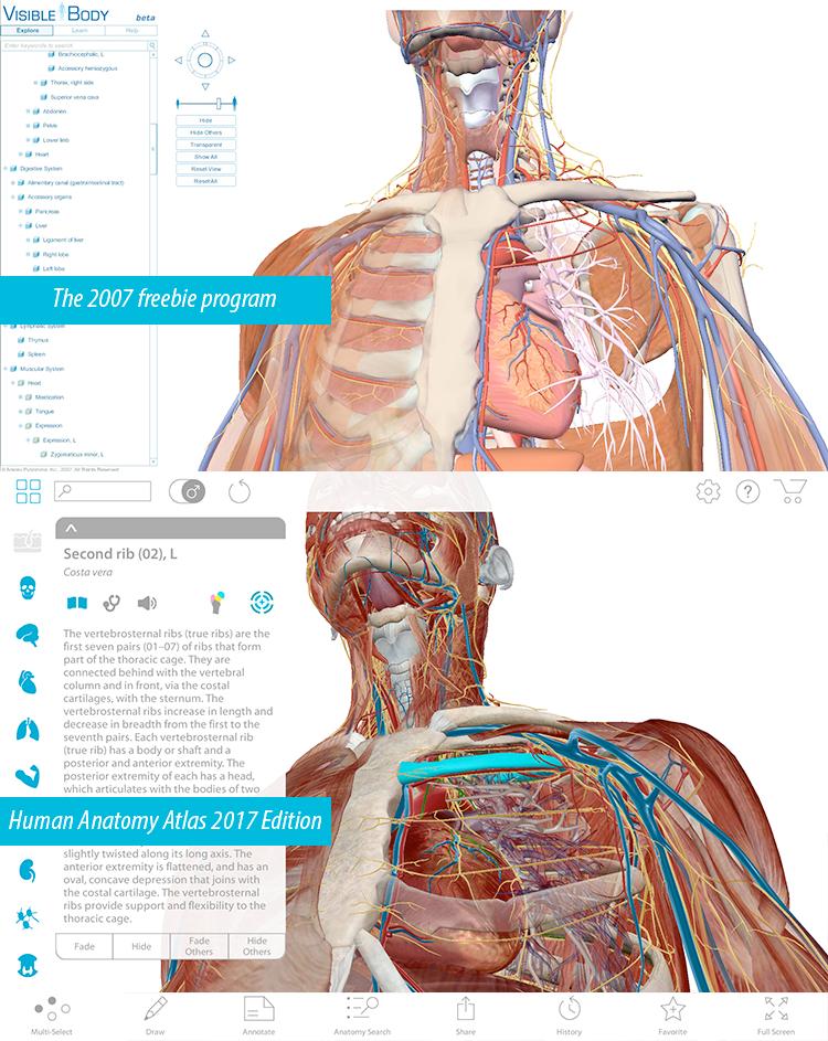 Visible body human anatomy atlas v1 1 0 android free