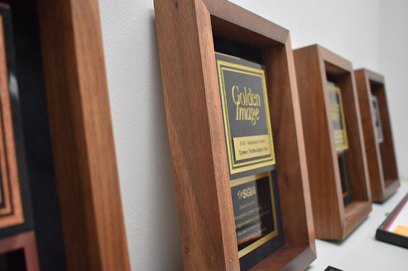 Golden Image Awards6
