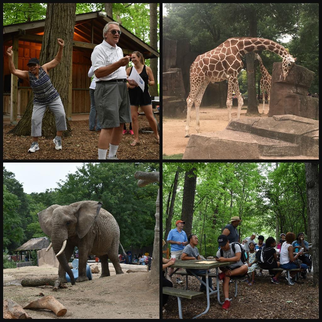 Xymox Zoo.jpg