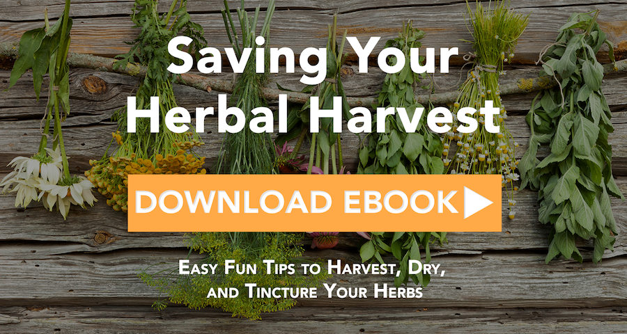 11 Must Read Herbal Books Recommended By An Herbalism Professor Achs