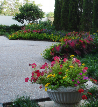 Colorfully planted container gardens can upgrade your property with immediate results.