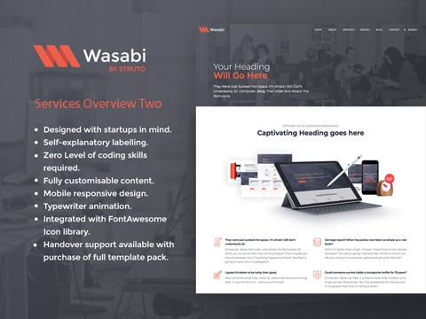 wasabi services overview template two