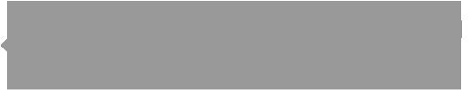 evv-museum-logo-grey