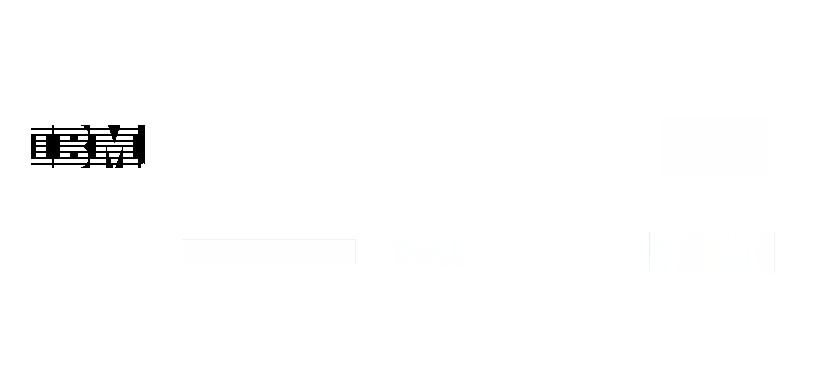 lighthouse_partners