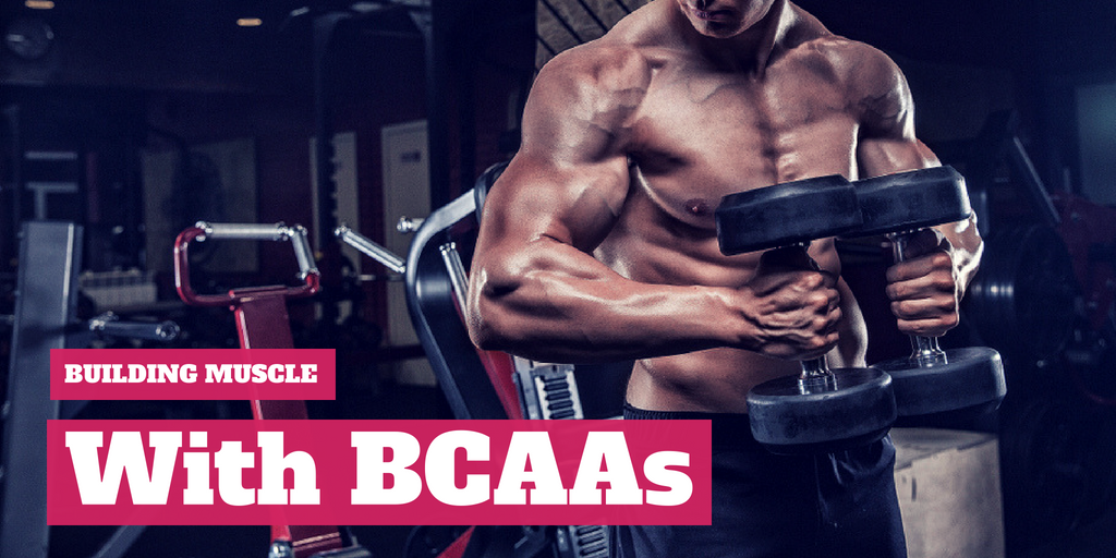Image result for What Exactly Is BCAA? How Can It Help Build Muscle?