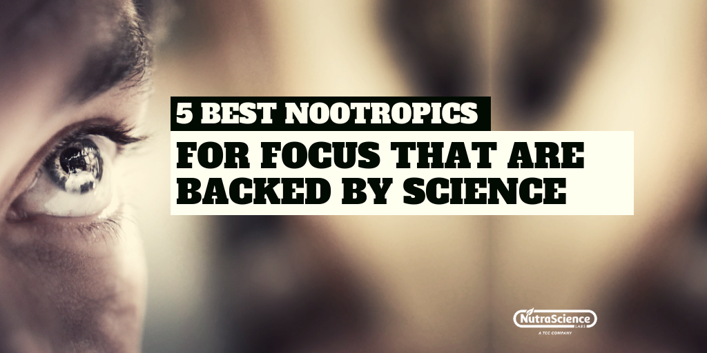 5 Best Nootropics For Focus That Are Backed By Science