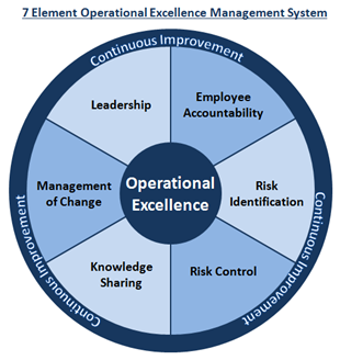 The 7 Element Operational Excellence Management System: Our