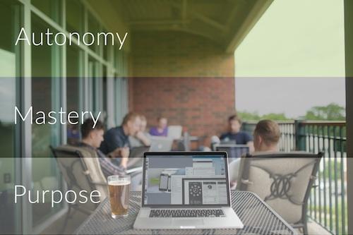 autonomy_mastery_purpose.jpg