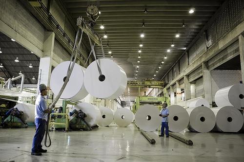 Resíduos das indústrias de papel e celulose: qual é a destinação adequada?