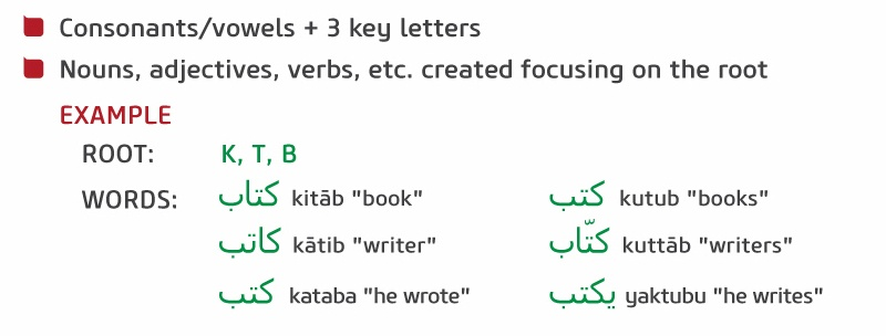 Facts about the Arabic language.jpg