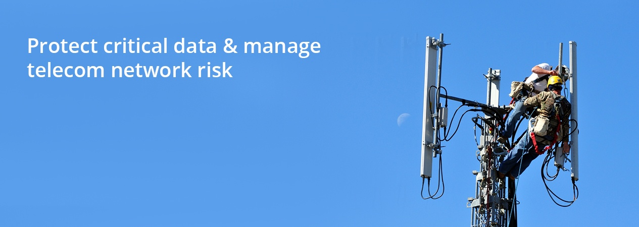 Protect critical data & manage telecom network risk