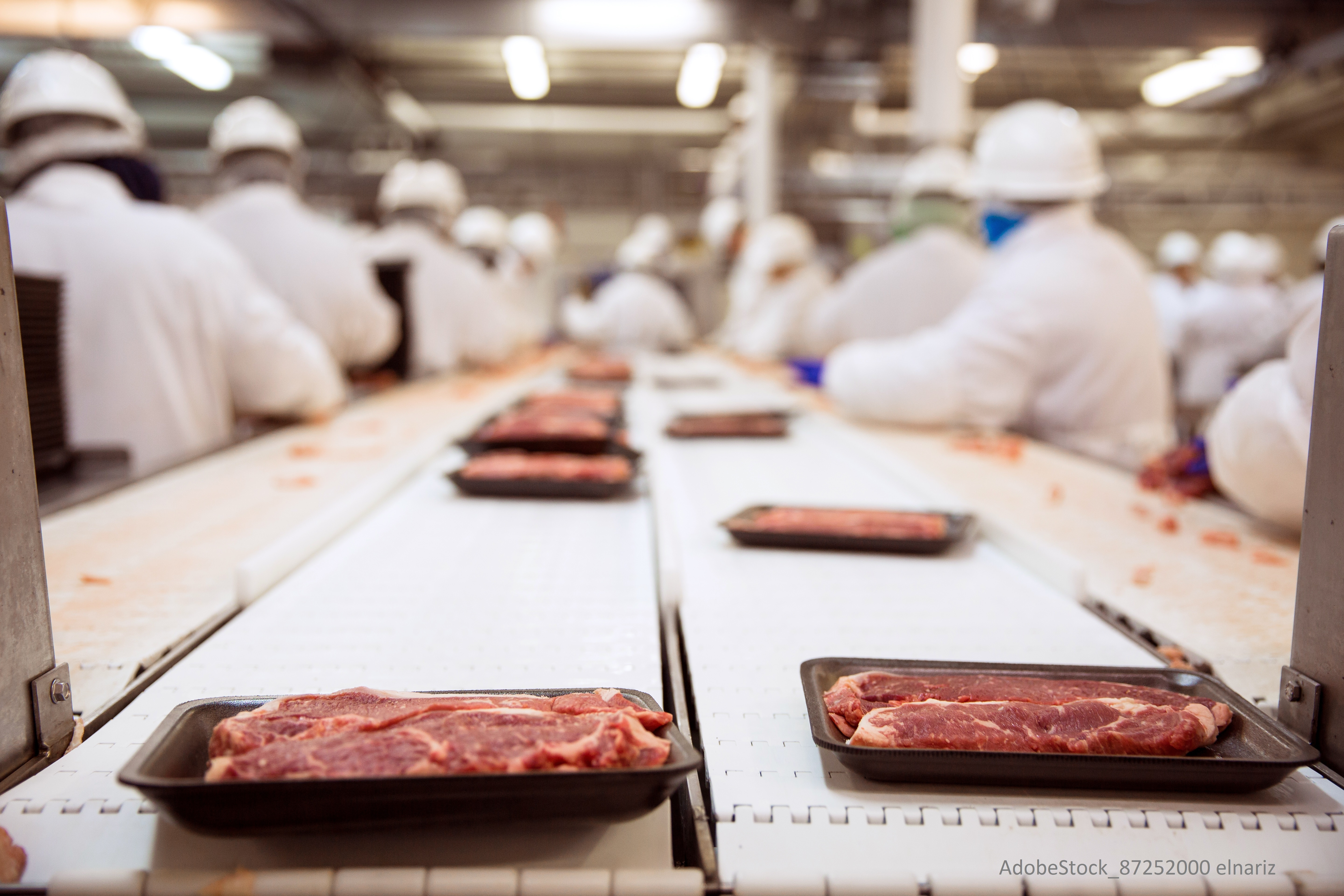 How to Meet Traceability Regulations in the Fresh Produce Industry
