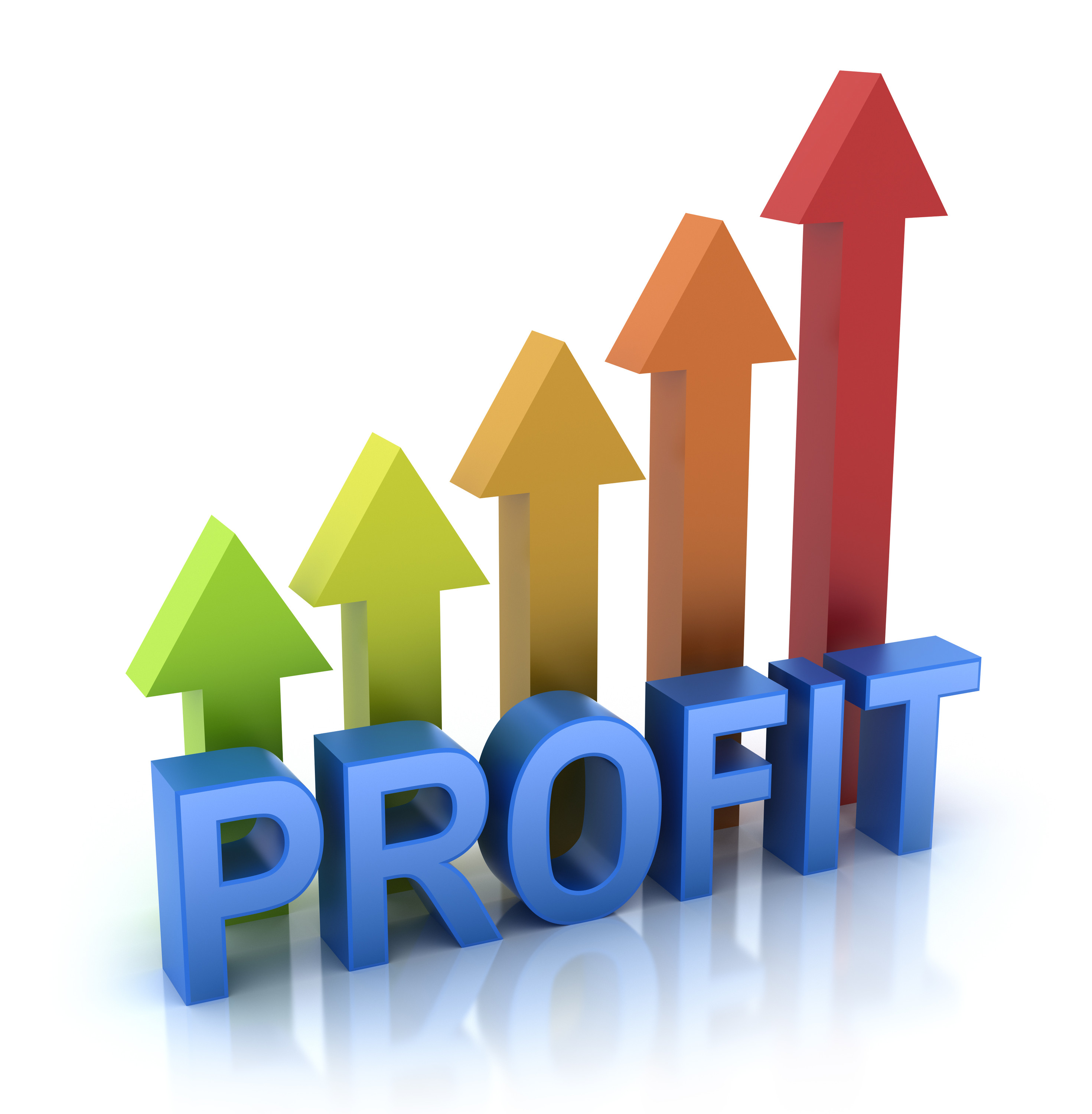 how to start a for profit organization