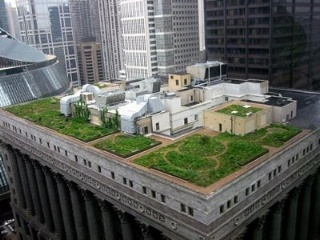 green-roof-save-money-320x240