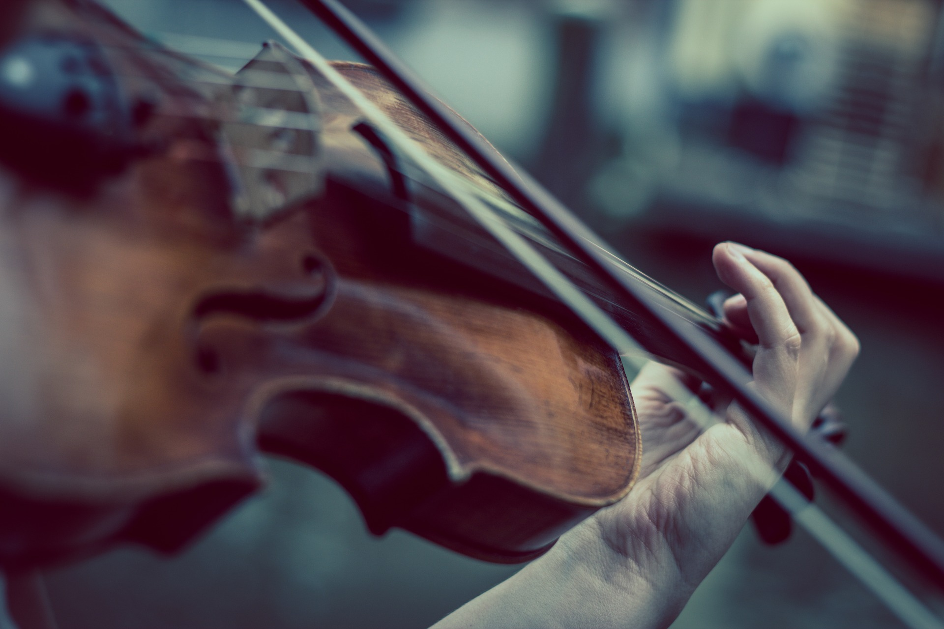 violin-374096_1920-1