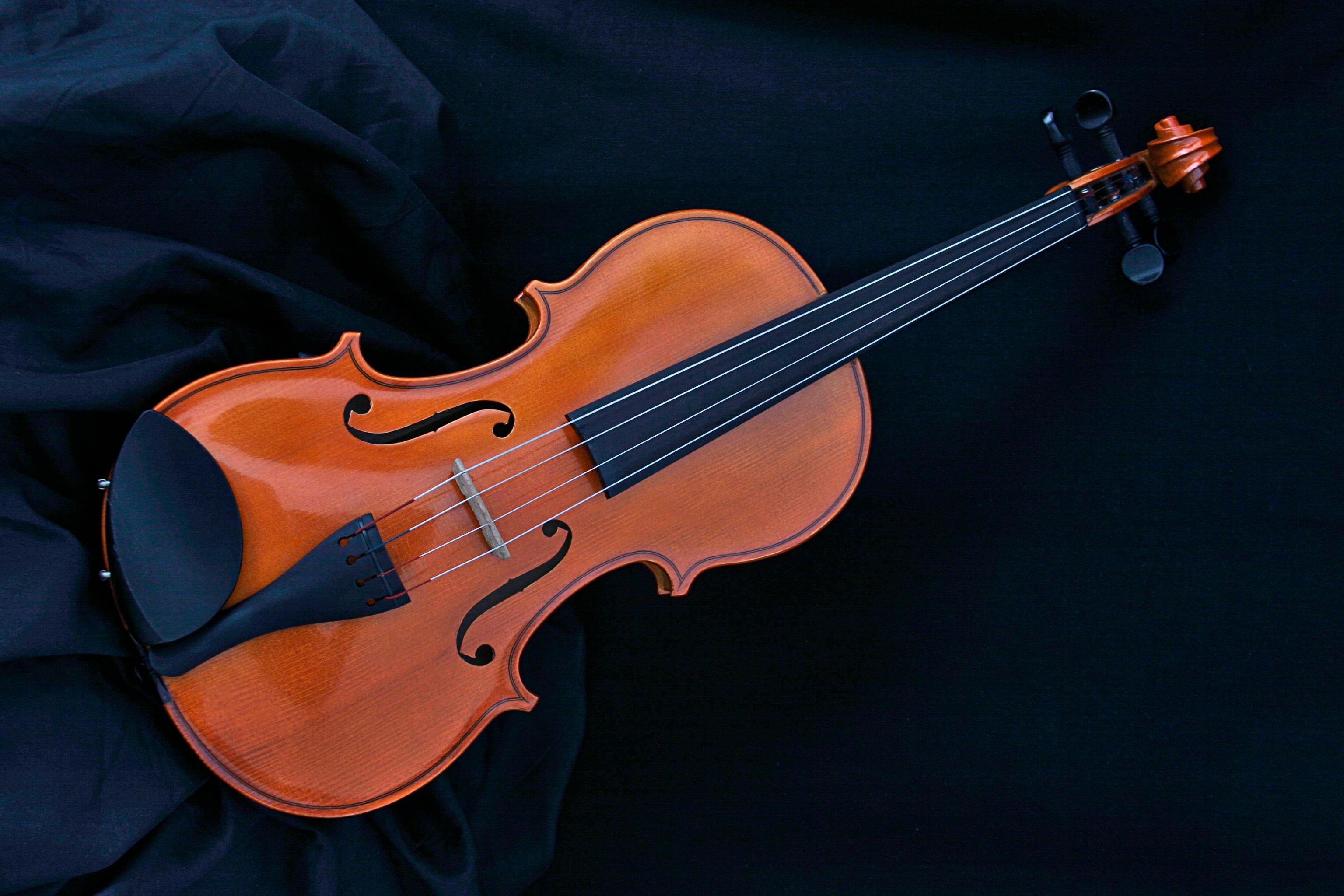 violon-epauliere