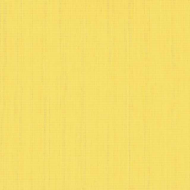 43 Yellow