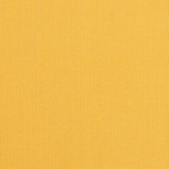 948 Spectrum Daffodil
