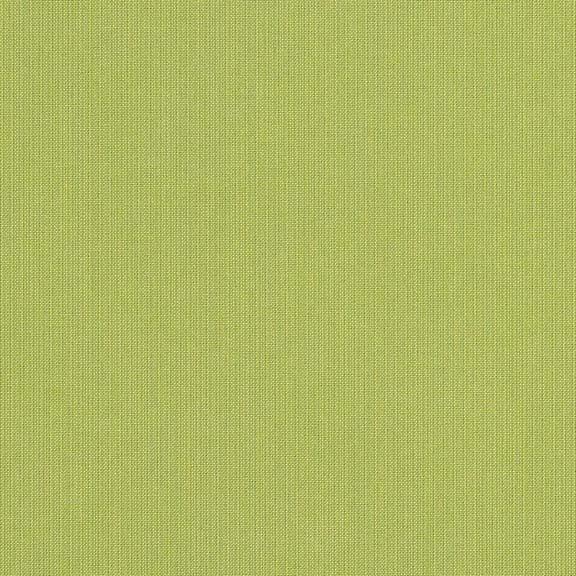 953 Spectrum Kiwi