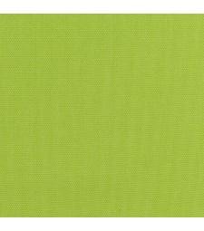 56y canvas parrot