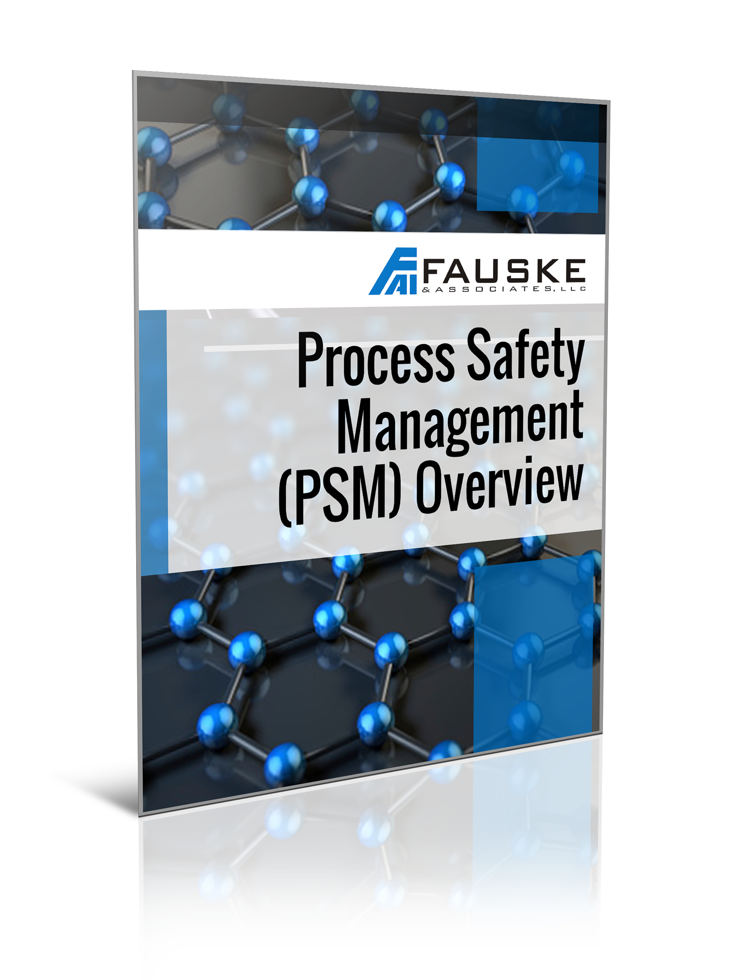 fauske-pg-cover-process-safety.png