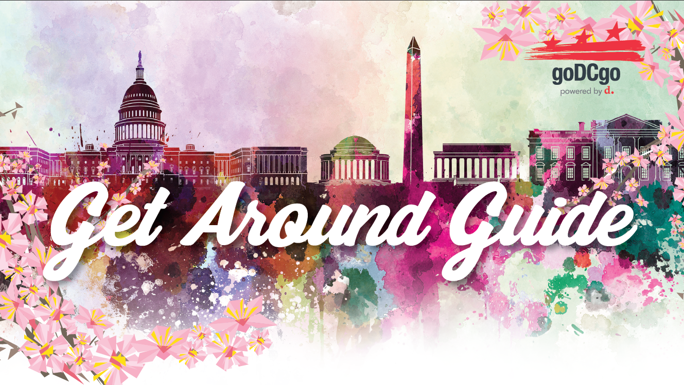 Thumbnail for Staying at A Cherry Blossom Hotel? Download Your Get Around Guide