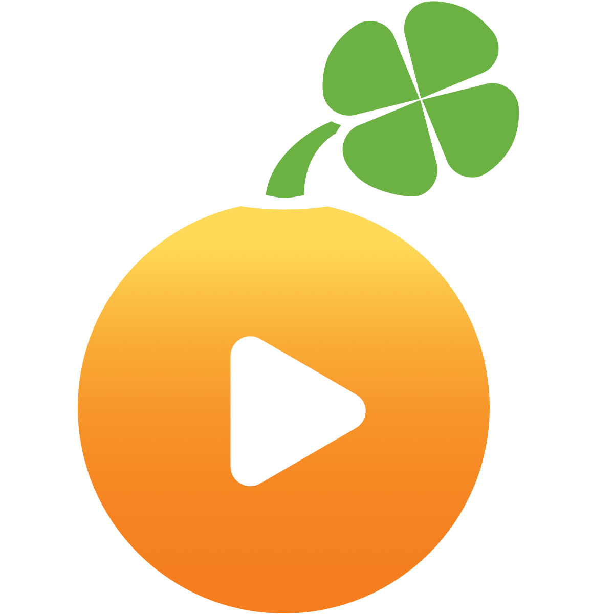 Image result for what is lucky orange
