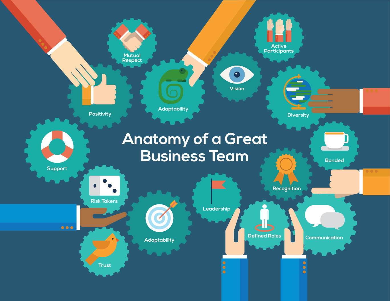 anatomy of a great business team infographic anatomy of a great business team small the question of what makes