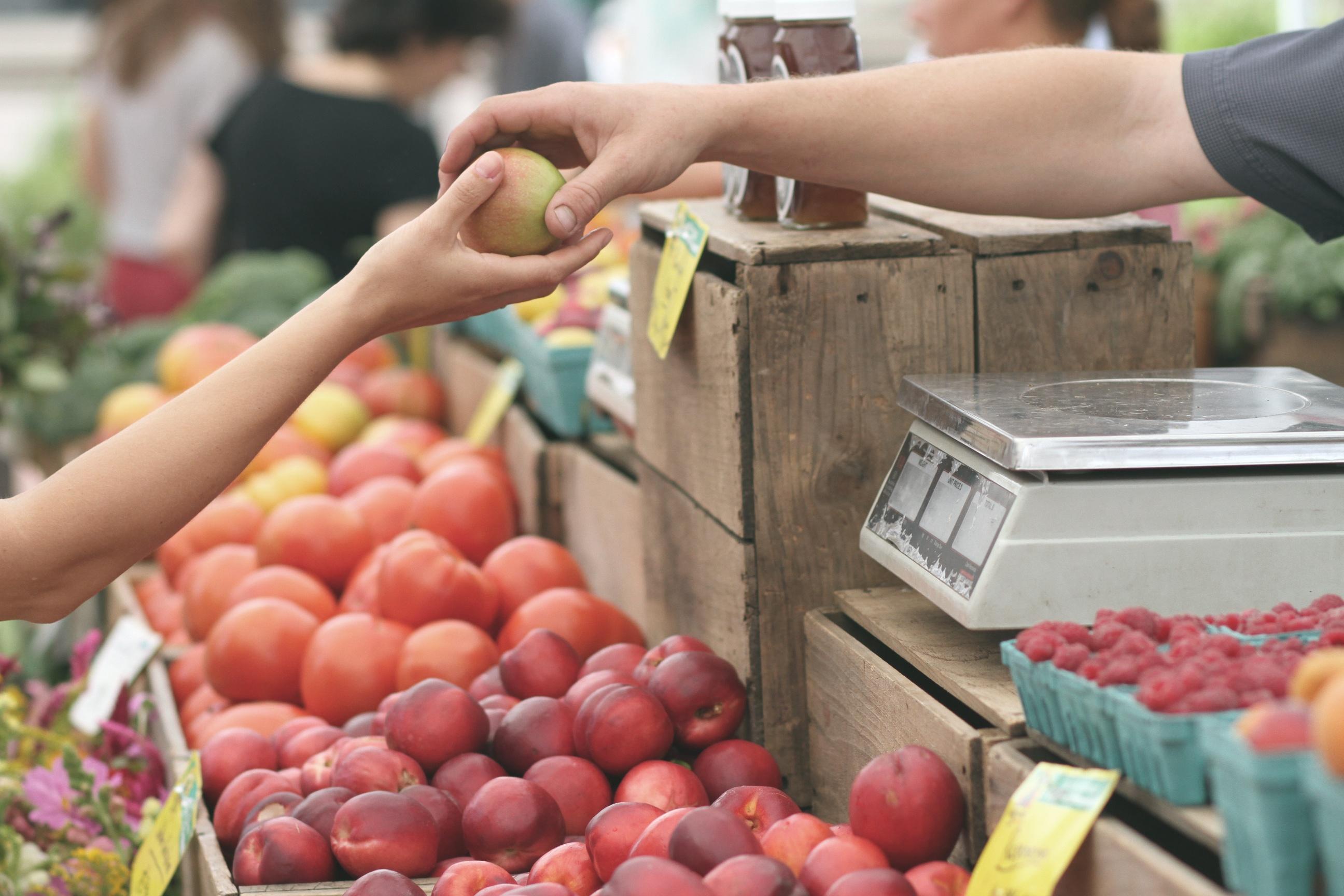 Small Business Saturday Apples Organic Farms Small Business Loans.jpeg