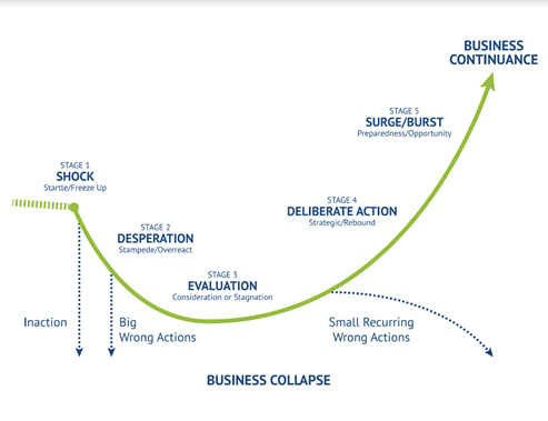Business lifecycle chart