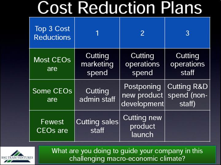 Q4 2010 CEO Survey of Growth-stage Companies   CEOs plan for