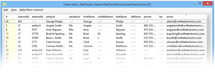 Getting Data From NetSuite