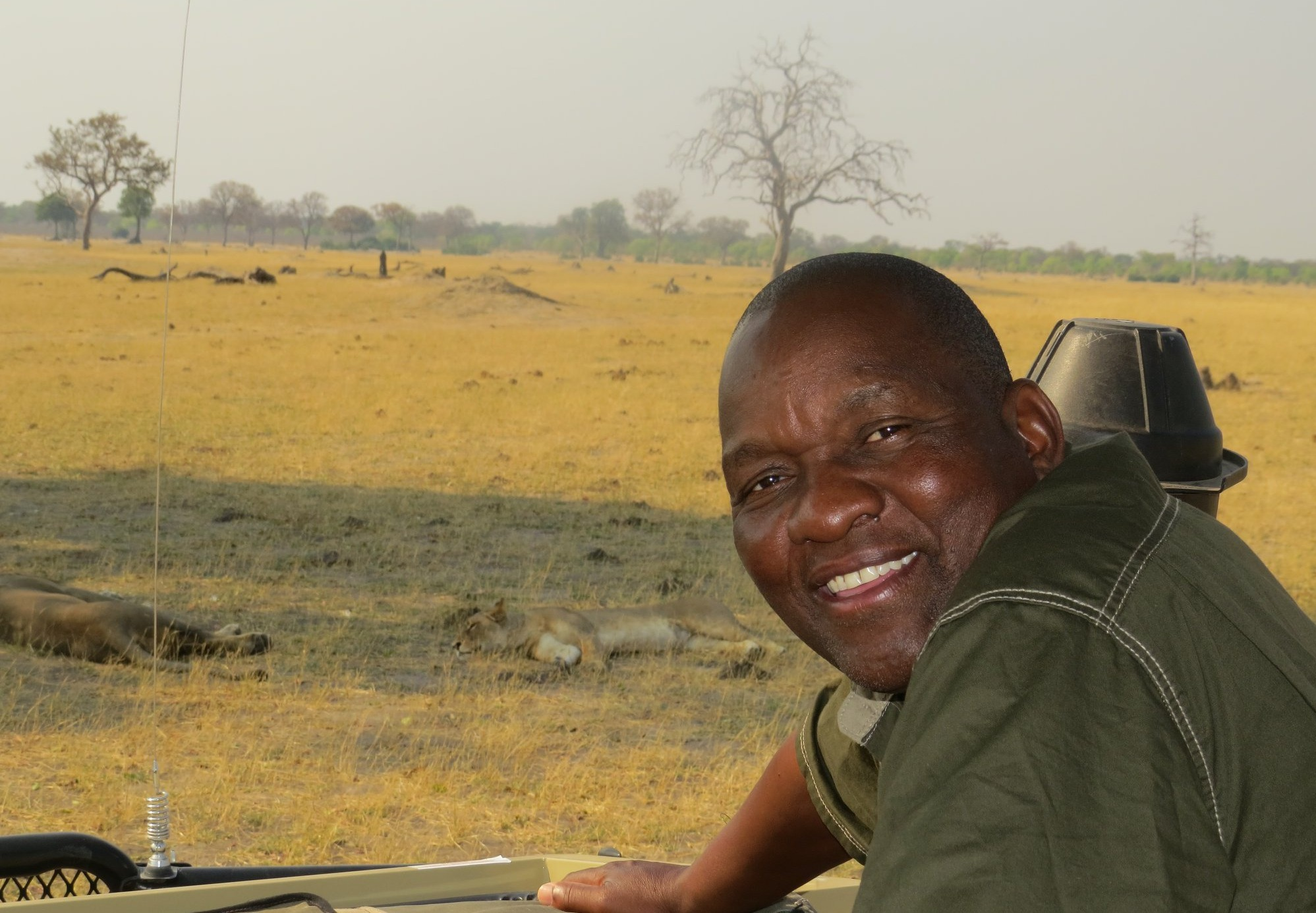 Calvet - Somalisa Hwange National Park Game drive lion Professional Guide When is the best time to go on safari to Zimbabwe