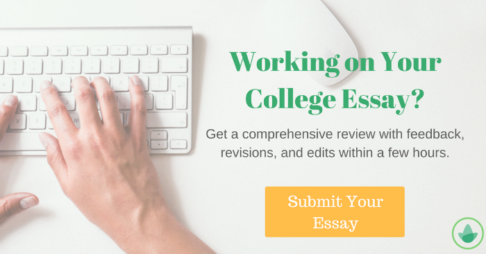 essay write best literary essay ideas opinion essay how to write  how to write the uchicago application essays submit your essay for review