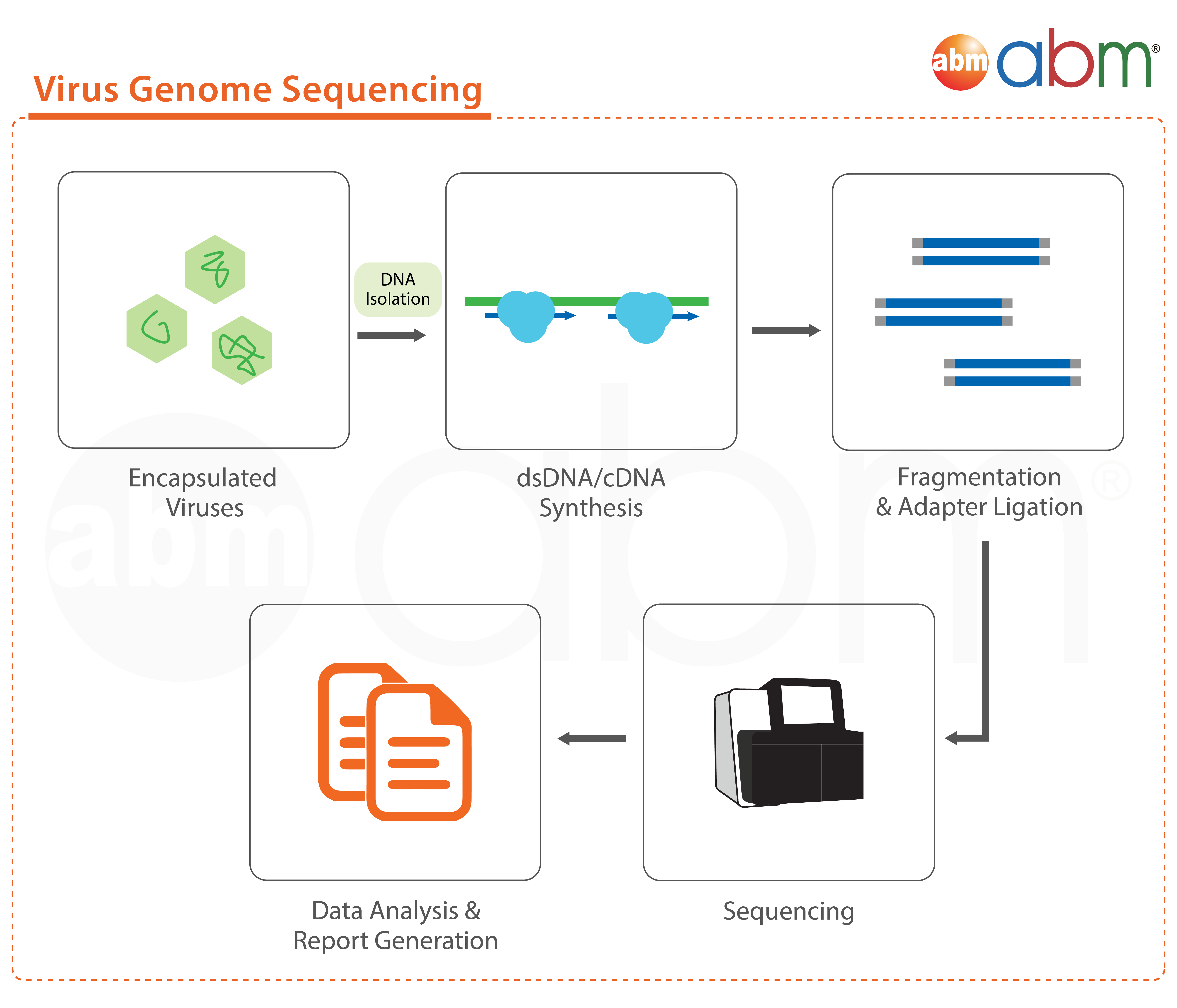 abm Virus Genome Sequencing