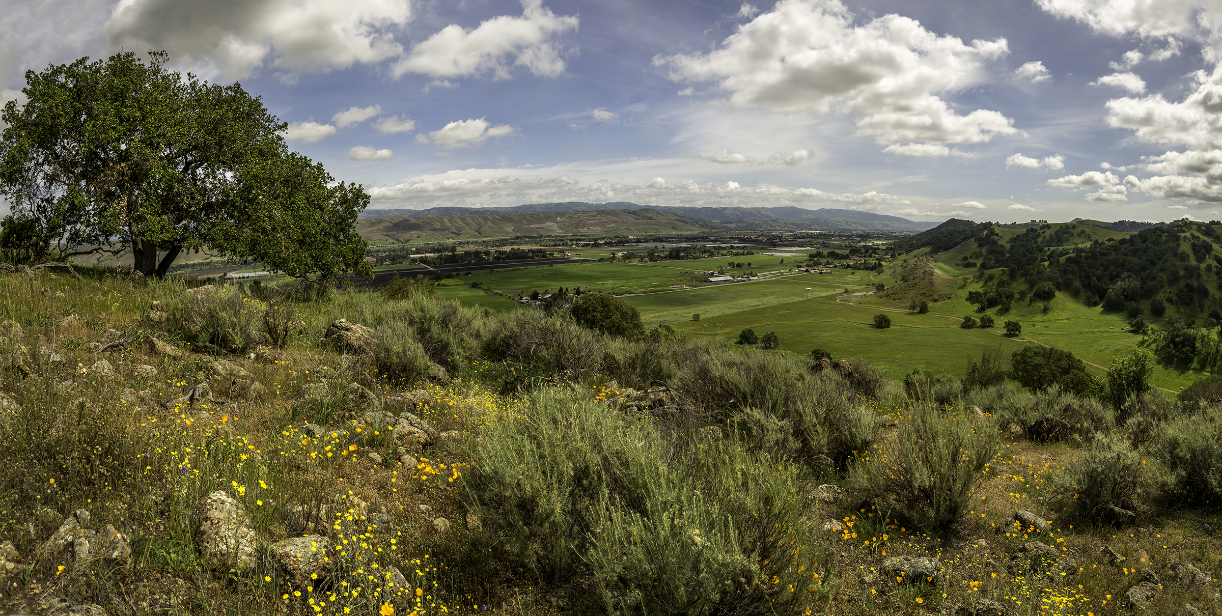#27 Coyote Valley-1